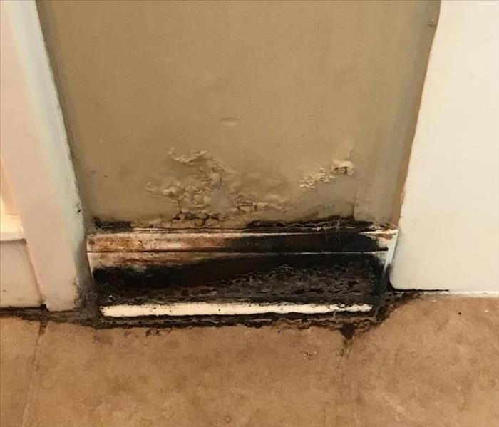 Bathroom Affected by Mold in Memphis Tn  Before
